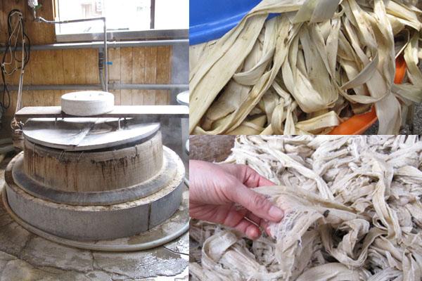 和紙の原料-楮